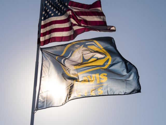 Aggie Flag Photo